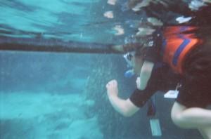 Holly and Matt looking into the shark tank