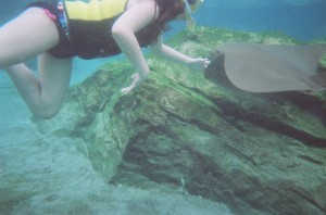 Miranda petting a cownose ray